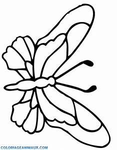 Dessin Facile Papillon : 99 dessins de coloriage papillon simple imprimer ~ Melissatoandfro.com Idées de Décoration
