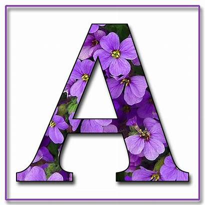Alphabet Letters Flowers Purple Flower Scrapbook Letter