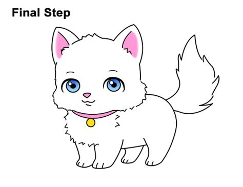 draw  cat cartoon video step  step pictures