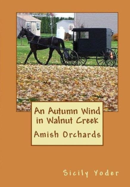 barnes and noble walnut creek an autumn wind in walnut creek amish christianity book