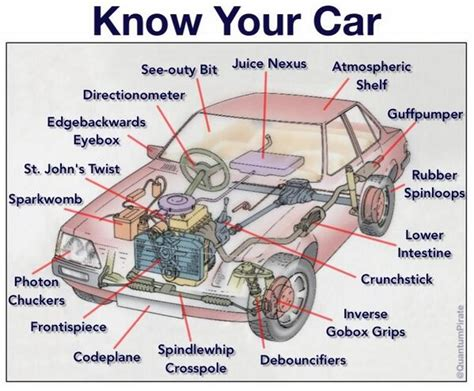 Know Your Car [infographic] The Poke