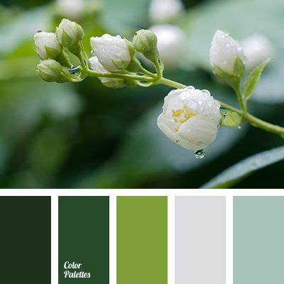 Palette Fresh Emerald Green by 25 Best Ideas About Gray Green Bedrooms On