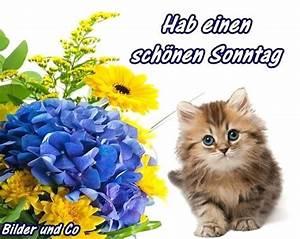 Lustige Bilder Sonntag : sonntag gb pics sonntag ~ Frokenaadalensverden.com Haus und Dekorationen
