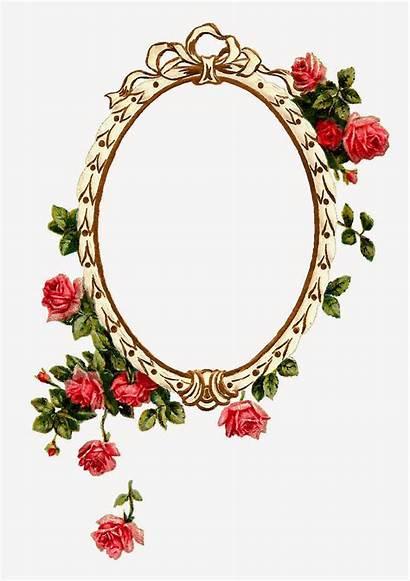 Frame Frames Printable Rose Flower Pink Digital