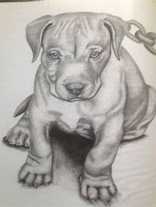 17 Best images about Animal drawings on Pinterest ...