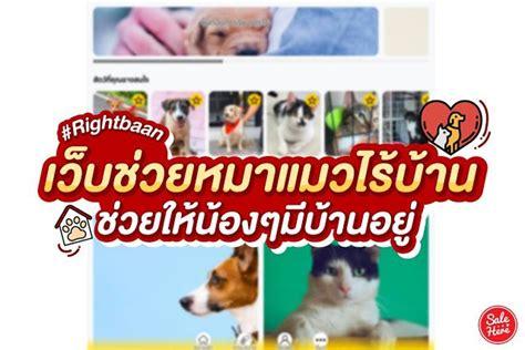แนะนำ เว็บช่วยหมาแมวไร้บ้าน ให้น้องๆ มีบ้านอยู่ โดยนิสิตสัตวแพทย์จุฬาฯ   สกิดข่าว ในปี 2021