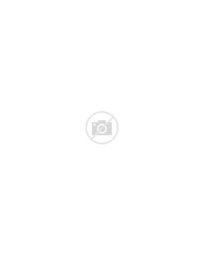 Canada Jasper Park National Alberta Nature Spirit