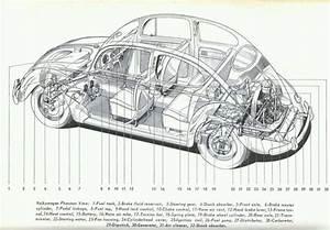 Vw Beetle Schematic