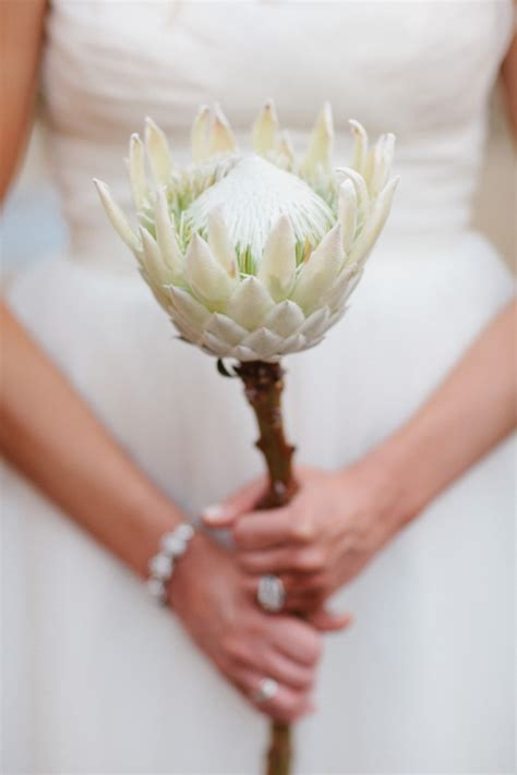 20 Stunning And Budget Friendly Single Stem Bouquets