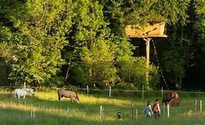 Constructeur Cabane Dans Les Arbres : dihan cabanes de france ~ Dallasstarsshop.com Idées de Décoration