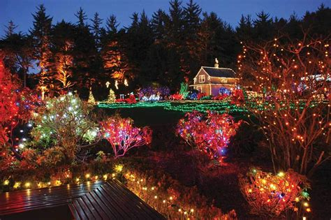 holiday lights in delaware 10 gardens that glitter with holiday lights garden