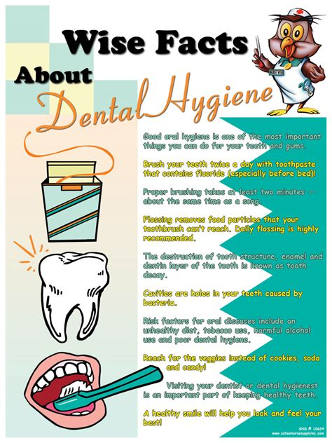 Wise Facts About Dental Hygiene Poster