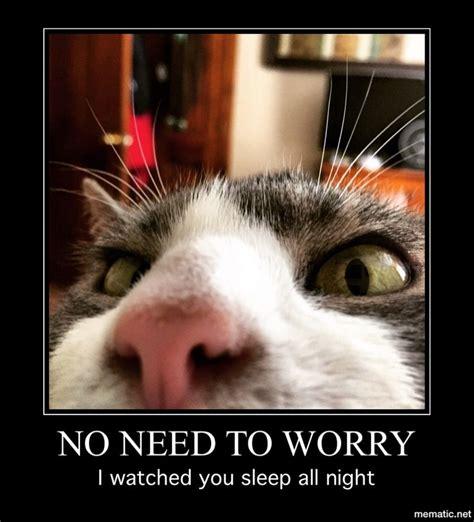 Stalker Memes - the 25 best stalker meme ideas on pinterest leaving work meme letter for resignation and
