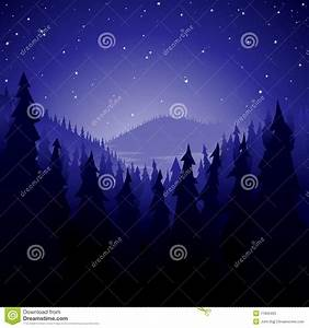 Pine Forest At Night Stock Photos - Image: 11835403