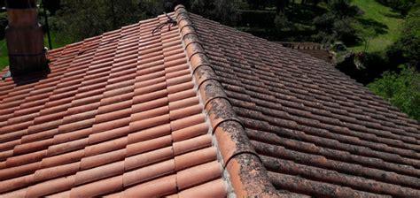 comment demousser toiture comment d 233 mousser sa toiture et la traiter durablement