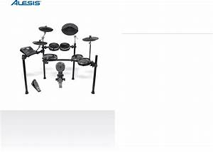 Download Alesis Drums Dm10 Manual And User Guides  Page 1