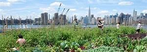 agriculture urbaine fortune With maison de l ecologie 12 agriculture urbaine fortune