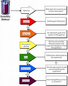 What is Scientific method and what are the steps of the ...