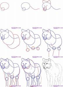 Step By Step Instructions On Drawing A Simple Wolf Howling