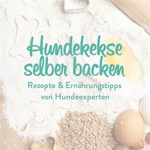 Hundekekse Selbst Backen : hundekekse selber backen westwing ~ Watch28wear.com Haus und Dekorationen