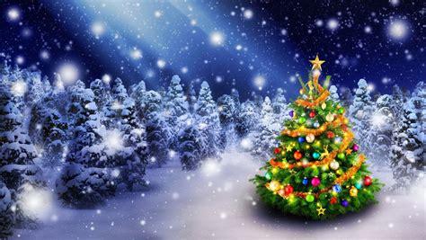 Choinka, Święta, Zima, Las