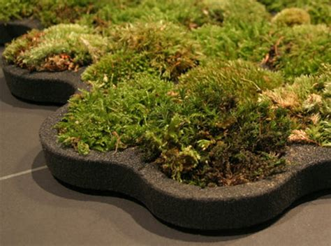 Living Moss Shower Mat by Living Moss Carpet Adds A Touch Of Green To Your Bathroom