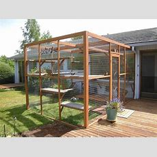 Cat Owners Are Building Catio Spaces For Their Favorite