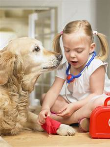 Girl playing doctor with dog - Stock Image F003/7498 ...