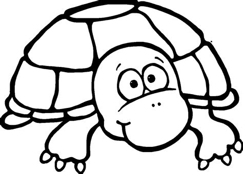 Turtle Colored Coloring Book Turtle Reading A Book