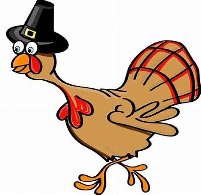 Turkey Thanksgiving Funny November Sing 2009 Song