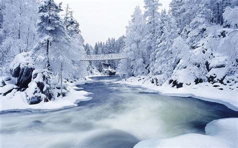 HD Winter Wonderland Wallpaper WallpaperSafari