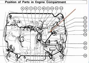 2012 Toyota Camry Engine Compartment Diagram
