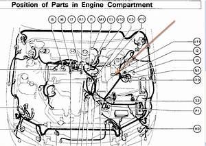 1986 Toyota Corolla Vacuum Diagram 3625 Julialik Es