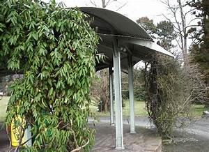 Kletterpflanzen Immergrün Winterhart : kletterpflanzen immergr n pflanzenwelt in sterreich ppt ~ Michelbontemps.com Haus und Dekorationen