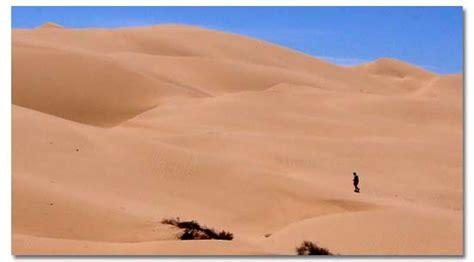 desert information desert biome project