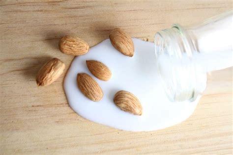 milk almond latte mandorla plant oat vs scopriamo insieme cani possono bere ricetta origine storia mandorle animals juicers nut market