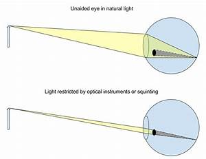 How Do A Microscope U0026 39 S Optics Expose Defects In The User U0026 39 S Vision