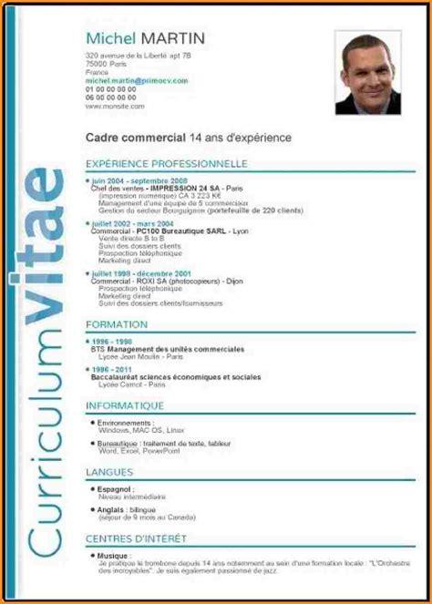 Exemple De Cv Professionnel En Francais by Exemple De Cv En Fran 231 Ais Meilleur Modele Cv