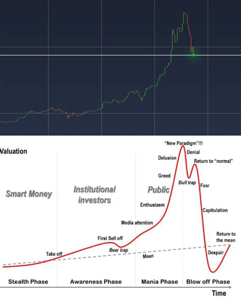 bitcoin … has all the hallmarks of a classic bubble as described earlier in this note. BITCOIN CHART (2017) VS GENERIC CHART OF A FINANCIAL BUBBLE ¿Coincidence?   Bitcoin chart, Chart ...