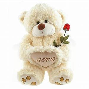 Teddy bear gift delivery, get well teddy bear gifts ...