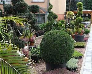 Plantes D Ombre Extérieur : plantes d ext rieur schwarz ~ Melissatoandfro.com Idées de Décoration