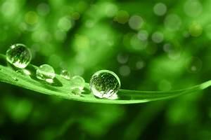 Regenwasser Zu Trinkwasser Aufbereiten : wasseraufbereitung krastel haustechnik ~ Watch28wear.com Haus und Dekorationen