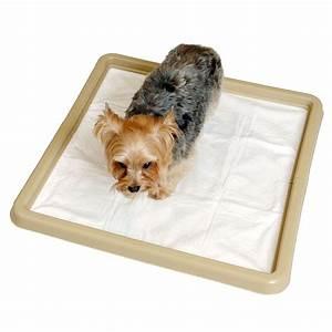 Precision little stinker housebreaking pad holder dog for Precision dog training