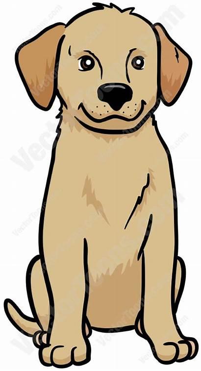 Retriever Golden Cartoon Puppy Sitting Spaniel Clipart