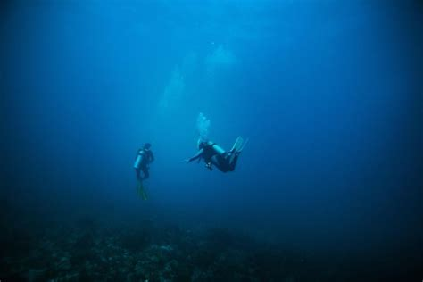 deep diving including concerns  courses