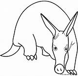 Aardvark Coloring Print Animal Pages Drawing Anteater Views Printable Armadillo Cartoons Clipart Freekidscoloringpage Drawings Total sketch template