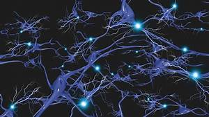 Mice with Huntington's Disease Successfully Targeted by ...