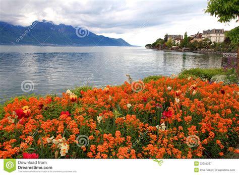 Geneva Flowers 17 landscape with flowers and lake geneva montreux