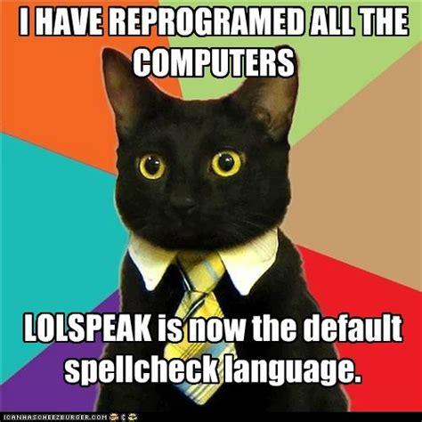 Animal Advice Meme - animal memes business cat no can has inglish rub mint
