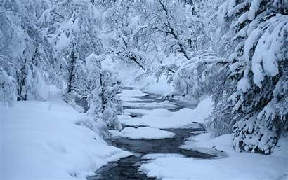 Snow Winter Trees Computer River Nature Christmas